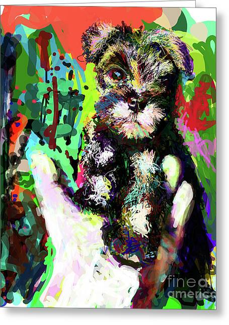 Schnauzer Greeting Cards - Harley in Hand Greeting Card by James Thomas