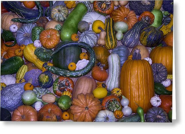 Harvest Abundance  Greeting Card by Garry Gay