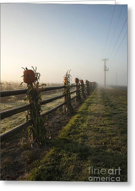 Harvest Festivities Greeting Cards - Harvest Time Greeting Card by Jim Corwin