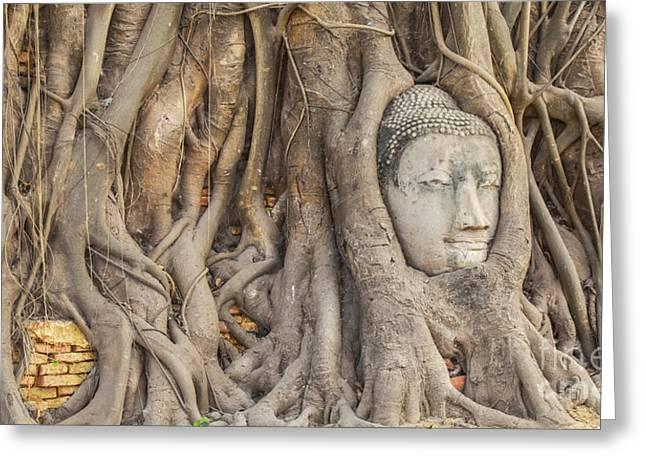 Overgrown Greeting Cards - Head of Sandstone Buddha Greeting Card by Anek Suwannaphoom