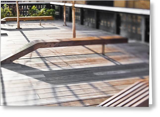High Line Park Greeting Card by Eddy Joaquim