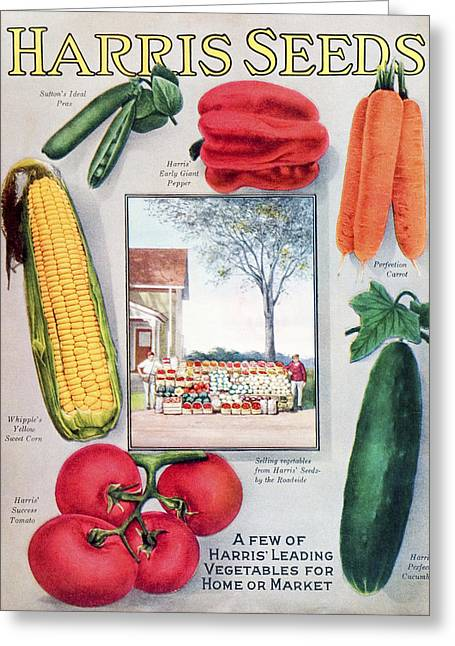 Historic Harris Seeds Catalog Greeting Card by Remsberg Inc