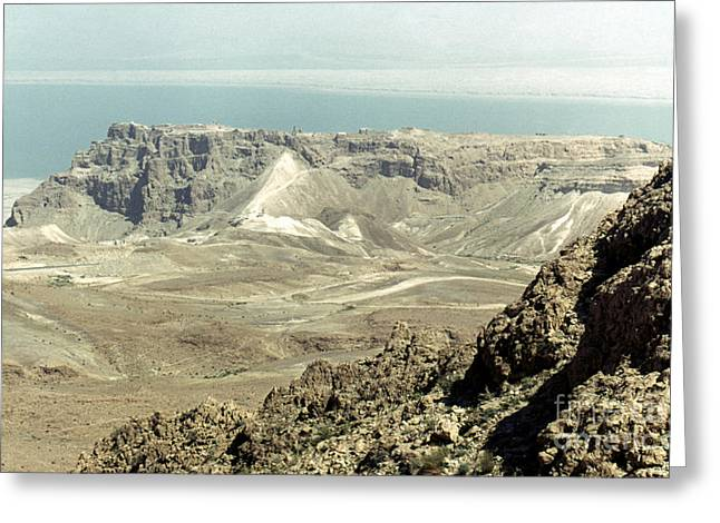 Israelites Greeting Cards - Holy Land: Masada Greeting Card by Granger