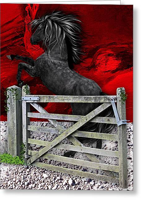 Mustang Greeting Cards - Horse Dreams Collection Greeting Card by Marvin Blaine