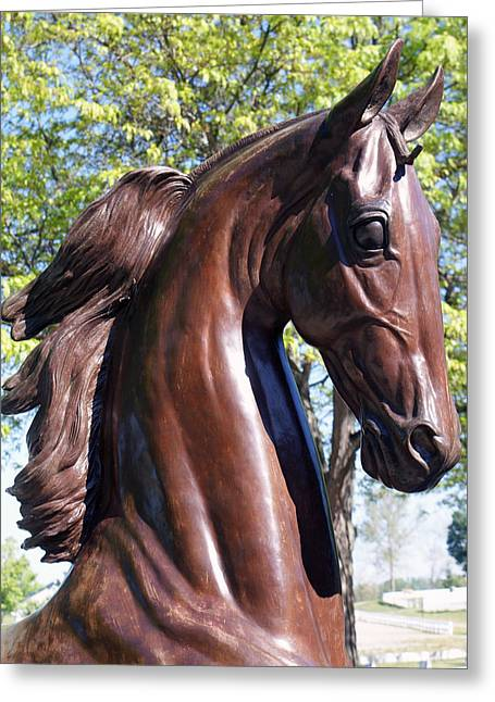 Horse Head In Bronze Greeting Card by Roger Potts