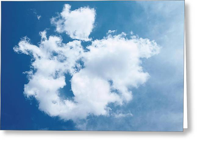 Tom Druin Greeting Cards - In the clouds Greeting Card by Tom Druin