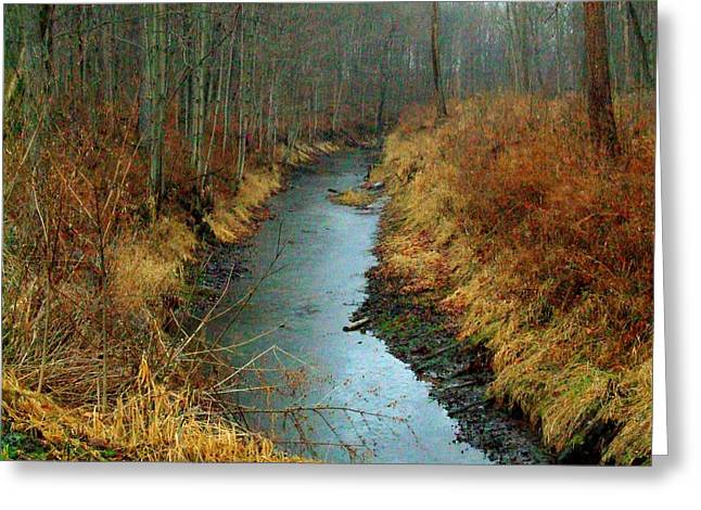 Indiana Landscapes Photographs Greeting Cards - Indiana Stream Greeting Card by Michael L Kimble