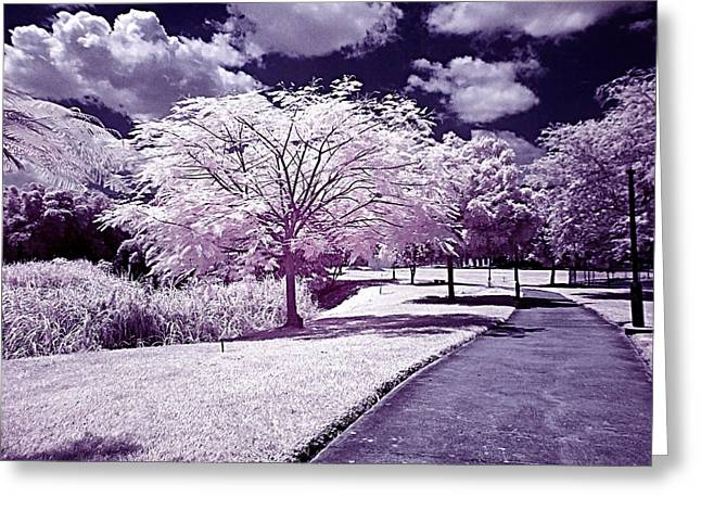 Lienzo Greeting Cards - Infrared Garden Greeting Card by Riccardo Zullian