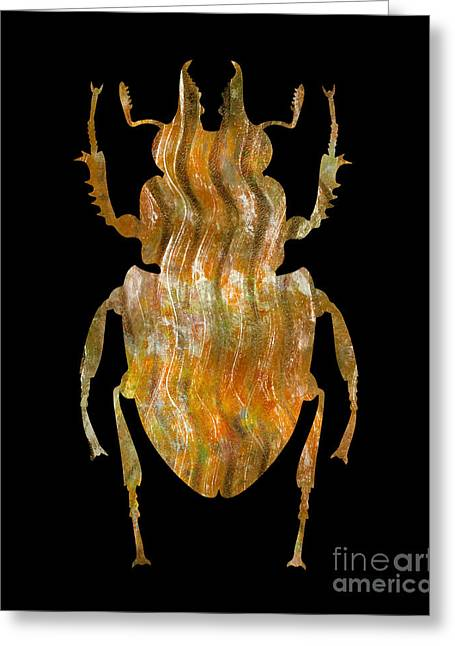 Printmaking Greeting Cards - Insect Greeting Card by Laura L Leatherwood