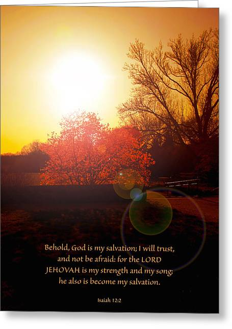 Bible Greeting Cards - Isaiah 12 v 2 Greeting Card by Debbie Nobile