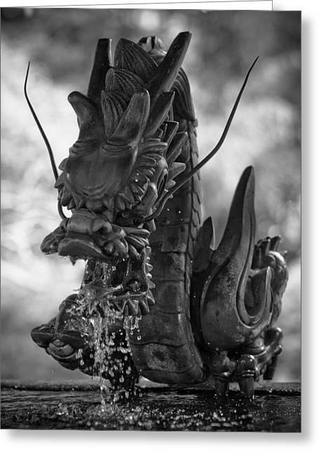 Faa Photographs Greeting Cards - Japanese Water Dragon Greeting Card by Sebastian Musial