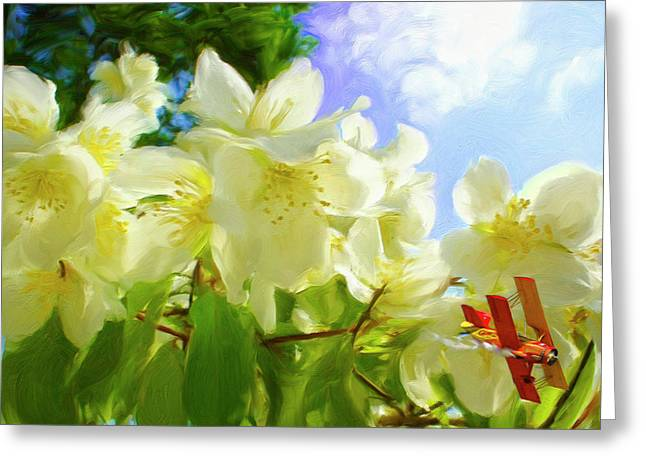 Pastel Greeting Cards - Jasmine fly-by Greeting Card by Snake Jagger