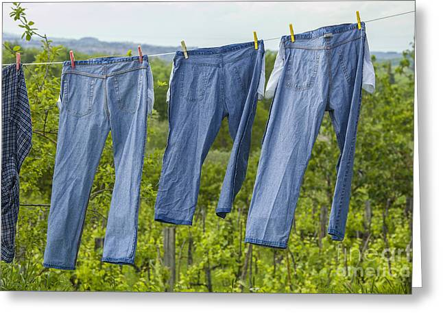 Jeans Drying On A Line Greeting Card by Patricia Hofmeester