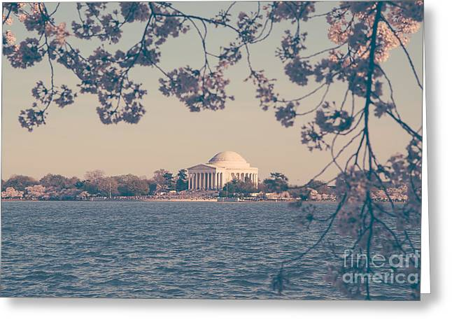 Soft Light Greeting Cards - Jefferson Memorial at Dusk Greeting Card by Emily Kay