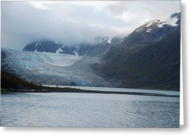John Hopkins Glacier Greeting Card by Michael Peychich