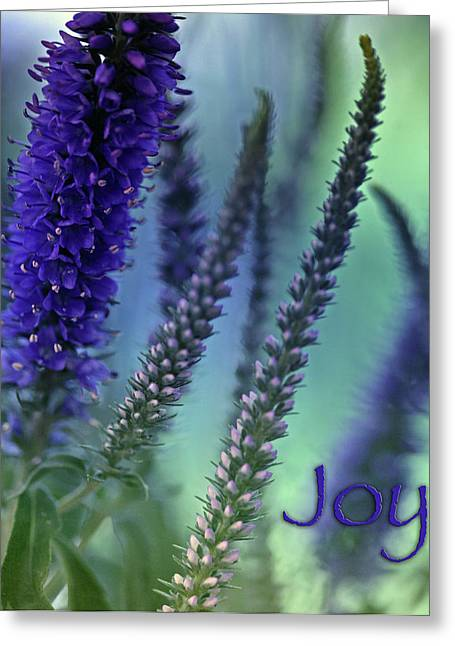 Soft Light Mixed Media Greeting Cards - Joy Greeting Card by Bonnie Bruno