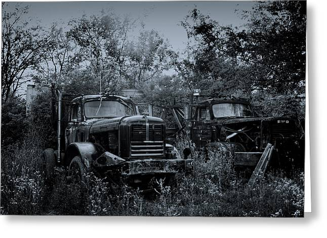 Junkyard Dogs II Greeting Card by Off The Beaten Path Photography - Andrew Alexander