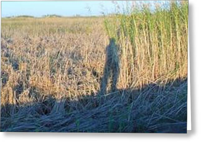 Self-portrait Greeting Cards - Just Me And My Shadow Greeting Card by John  Glass