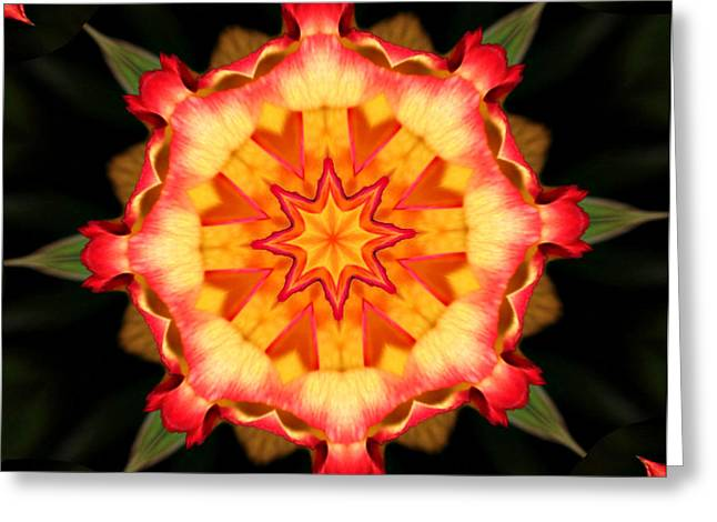 Kaleidoscope Effect Greeting Cards - Kaleidoscope of a Rosebud Greeting Card by Cathie Tyler