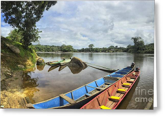 Karjoles In The Suriname River Greeting Card by Patricia Hofmeester