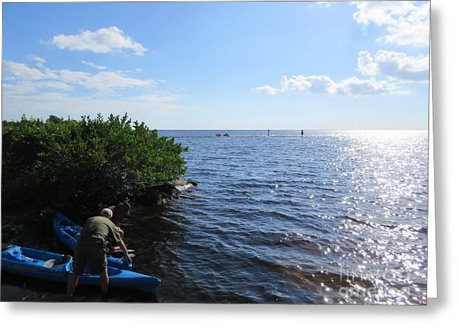 Kayak Mixed Media Greeting Cards - Kayaks Greeting Card by Frederick Holiday