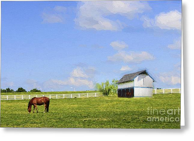 Spring Scenes Greeting Cards - Kentucky Greeting Card by Darren Fisher