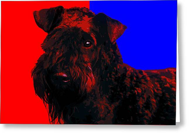 Best Friend Greeting Cards - Kerry Blue Terrier Greeting Card by Alexey Bazhan