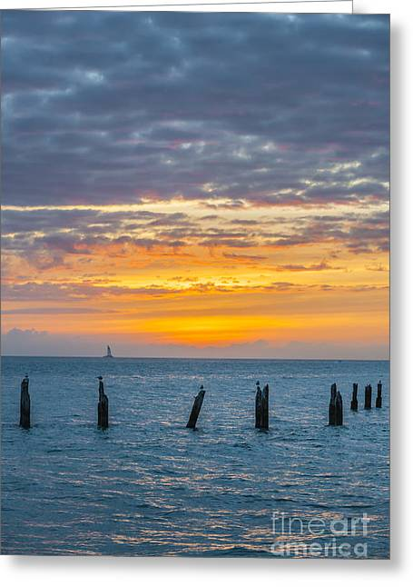Key West Sunset Greeting Card by Elena Elisseeva