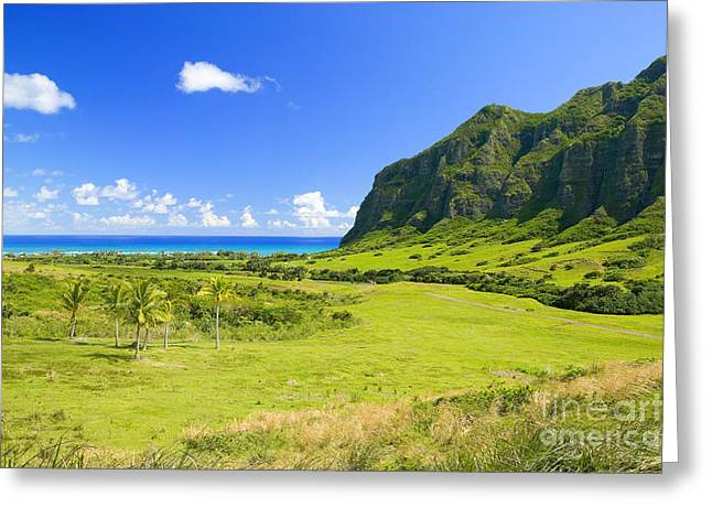 Pastureland Greeting Cards - Kualoa Ranch Mountains Greeting Card by Dana Edmunds - Printscapes