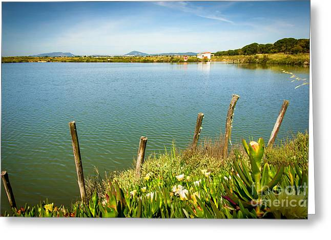 Lake And Poles Greeting Card by Carlos Caetano