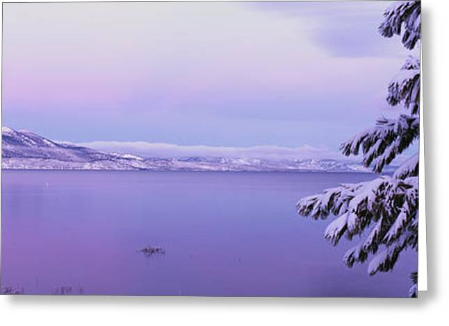 Placid Blue Greeting Cards - Lake Tahoe Ca Greeting Card by Panoramic Images