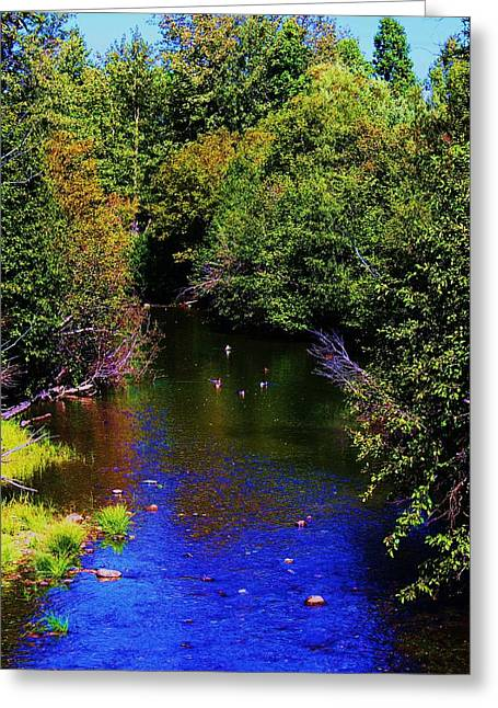 Tahoe National Forest Greeting Cards - Lake Tahoe-taylor Creek Greeting Card by Russell  Barton