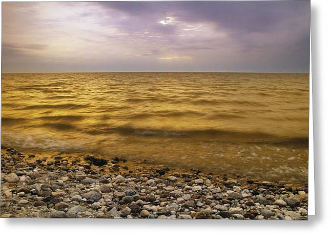 Long Shot Greeting Cards - Lake Winnipeg, Manitoba, Canada Greeting Card by Darwin Wiggett