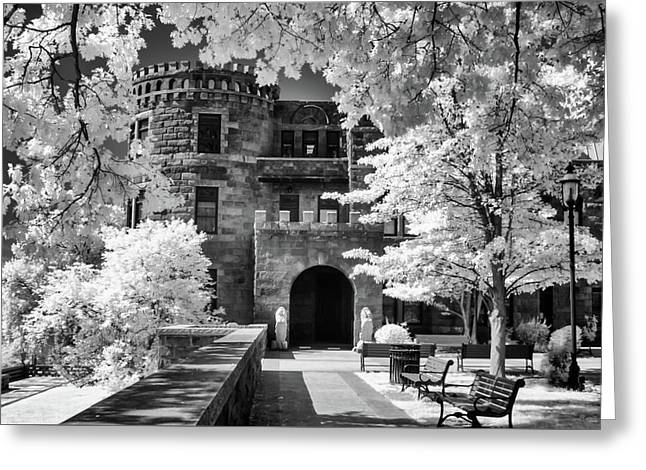 Lambert Castle Greeting Card by Anthony Sacco