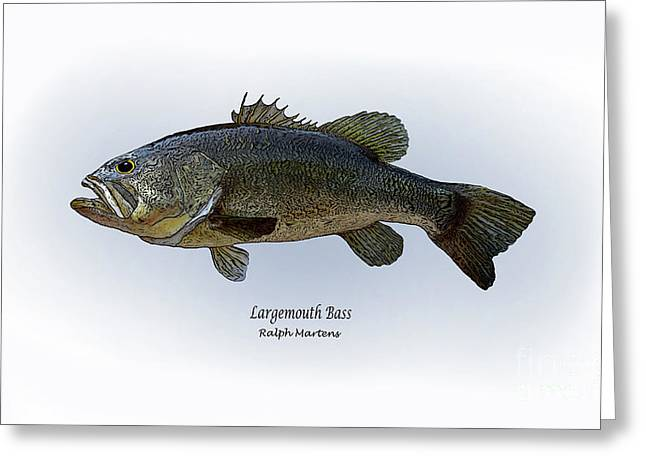 Angling Drawings Greeting Cards - Largemouth Bass Greeting Card by Ralph Martens