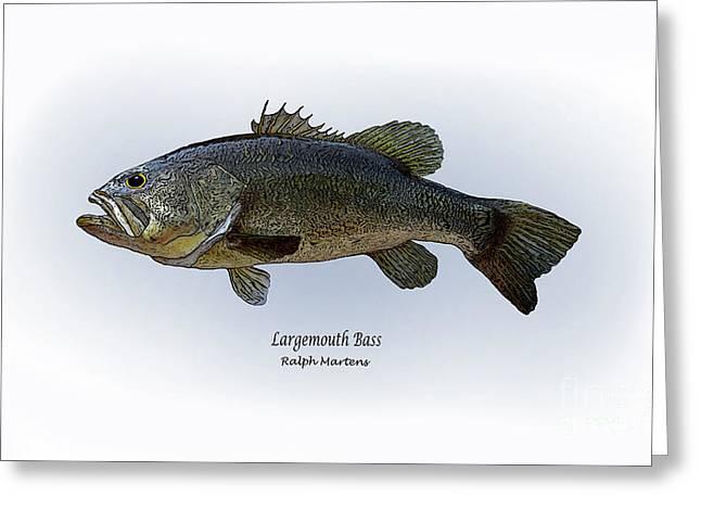 Largemouth Bass Greeting Card by Ralph Martens