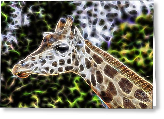Giraffe Greeting Cards - Latitude Greeting Card by Marvin Blaine