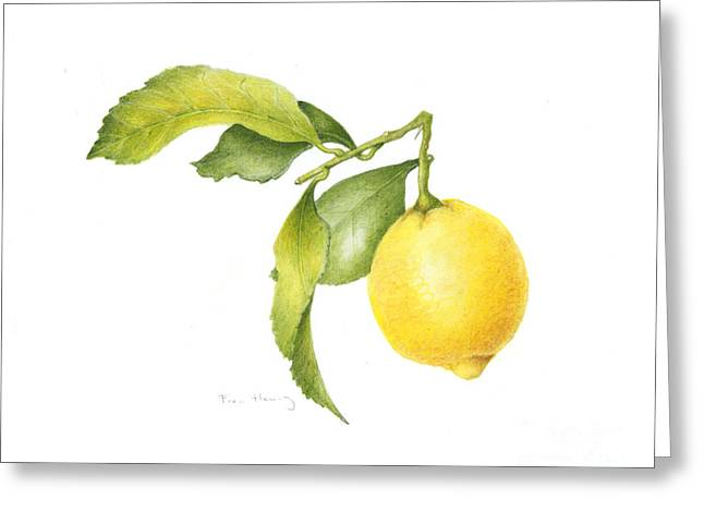 Lemon Art Paintings Greeting Cards - Lemon Greeting Card by Fran Henig