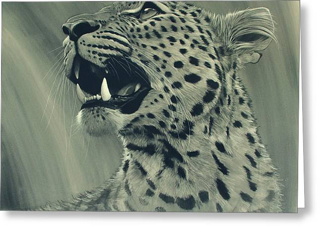 Black And White Cats Greeting Cards - Leopard Portrait Greeting Card by Aaron Blaise