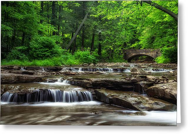 Wolf Creek Photographs Greeting Cards - Letchworth Wolf Creek Greeting Card by Mark Papke