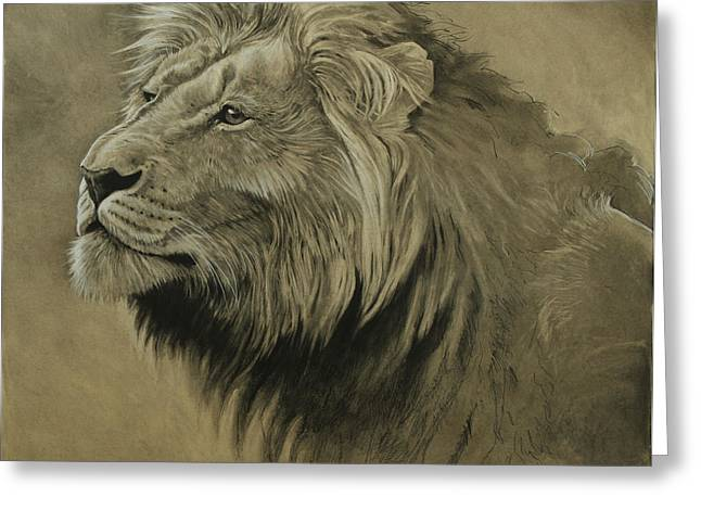 African Lion Art Greeting Cards - Lion Portrait Greeting Card by Aaron Blaise