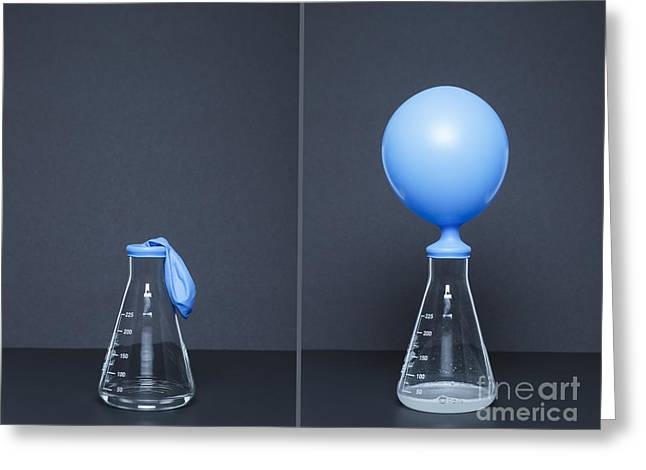 Carbon Dioxide Greeting Cards - Lithium Carbonate, Citric Acid, Reaction Greeting Card by GIPhotoStock