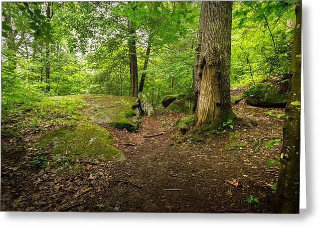 Wv Greeting Cards - Little Creek Park Greeting Card by Shane Holsclaw