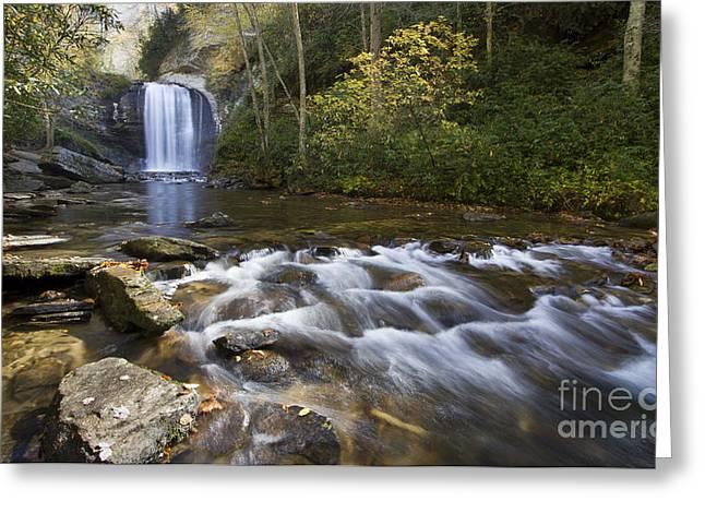 Look Photographs Greeting Cards - Looking Glass Falls North Carolina Greeting Card by Dustin K Ryan