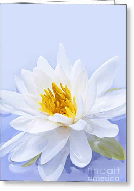Floating Photographs Greeting Cards - Lotus flower Greeting Card by Elena Elisseeva