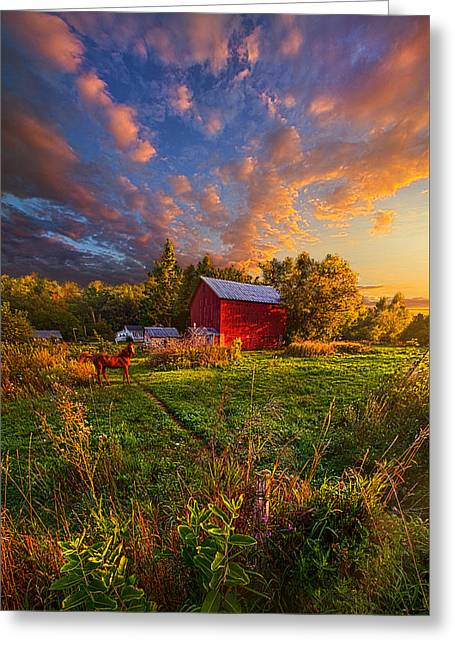 Phil Koch Greeting Cards - Loves Pure Light Greeting Card by Phil Koch