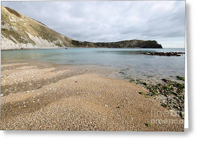 Lulworth Cove Greeting Card by Stephen Smith