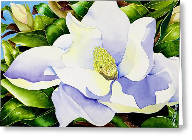 Shiny Leaves Greeting Cards - Magnolia in Leaves Greeting Card by Janis Grau