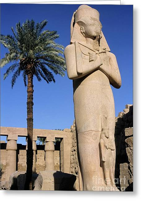 Archaeology Archeological Greeting Cards - Majestic statue of Ramses II at Karnak Temple Greeting Card by Sami Sarkis