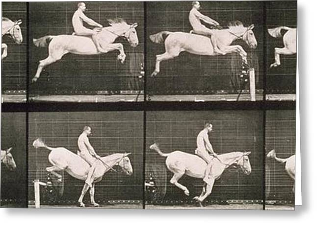 Equestrian Prints Greeting Cards - Man and horse jumping a fence Greeting Card by Eadweard Muybridge